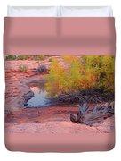 Magic Puddle At Canyon Lands Duvet Cover