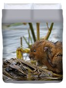 Water Vole Cleaning Duvet Cover