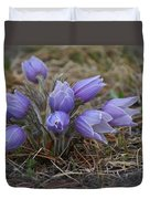 Watercolor Pasque Flowers Duvet Cover
