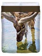 Watering Kudu Duvet Cover