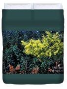 Wattyl - Wild Flower Of Australia Duvet Cover
