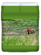 We Are 3 Red Fox Puppies Duvet Cover