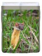 Weasel Duvet Cover