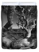 Weather Beaten Pine Tree And Ocean Bay - Monochrome Duvet Cover