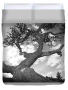Weather Beaten Pine Tree And Sun - Monochrome Duvet Cover