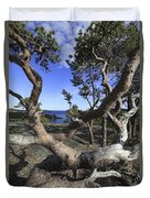Weather Beaten Pine Tree At The Swedish High Coast Duvet Cover