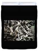 Weathered Roots - Sitka Spruce Tree Hoh Rain Forest Olympic National Park Wa Duvet Cover by Christine Till