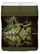 Weeki Wachee Springs Duvet Cover