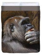 Western Gorilla, Gladys Porter Zoo, Brownsville, Texas Duvet Cover