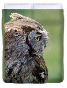 Western Screech Owl Duvet Cover