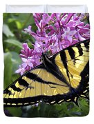 Western Tiger Swallowtail Butterfly Duvet Cover by Daniel Hagerman