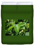 Wet Bushes Duvet Cover