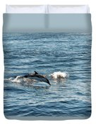Whale Watching And Dolphins 1 Duvet Cover