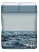 Whale Watching And Dolphins 2 Duvet Cover
