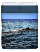 Whale Watching Balenottera Comune 4 Duvet Cover