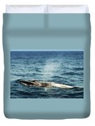 Whale Watching Balenottera Comune 5 Duvet Cover