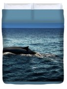 Whale Watching Balenottera Comune 6 Duvet Cover