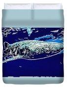 Whaleshark  Duvet Cover