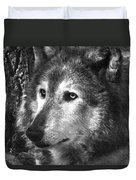 What Is A Wolf Thinking Duvet Cover