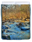 What Streams Are Made Of Duvet Cover by Lisa Wooten