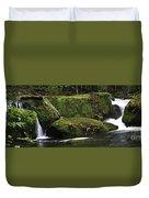 Whatcom Falls Park Duvet Cover