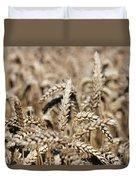 Wheat Close Up Summer Season Duvet Cover