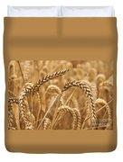 Wheat Ears 1 Duvet Cover