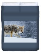 Where The Coyote Walks Duvet Cover
