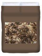 Whiptail Lizard Duvet Cover