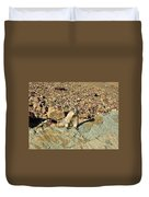 Whistle Pig Of The Rockies Duvet Cover
