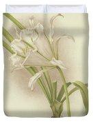 White Amaryllis   Ismene Andreana Duvet Cover