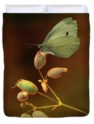 White And Green Butterfly On Dried Flowers Duvet Cover
