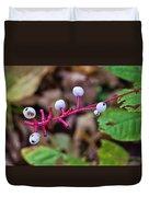 White Berries - Kettle Moraine 10-14-16 Duvet Cover