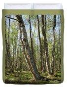 White Birch Forest Duvet Cover