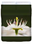 White Cherry Blossom Against Green Duvet Cover