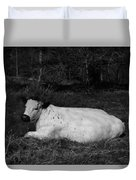 White Cow Luxuriates Duvet Cover