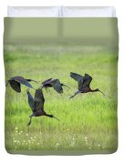White-faced Ibis Rising, No. 2 Duvet Cover
