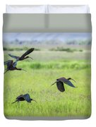 White-faced Ibis Rising, No. 3 Duvet Cover