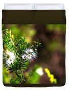 White Flowers Of Kunzea Ambigua Duvet Cover