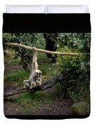 White Handed Gibbon 1 Duvet Cover