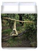 White Handed Gibbon 2 Duvet Cover