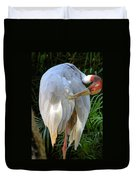 White Ibis At The Zoo Duvet Cover