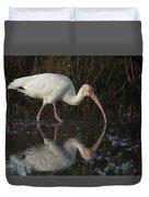 White Ibis Feeding In Morning Light Duvet Cover