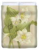 White Orchids   Eucharis Sanderiana Duvet Cover