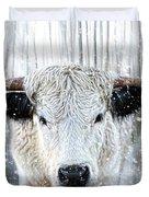 White Park Cattle In The Snow Duvet Cover