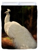 White Peacock In Golden Hour Duvet Cover