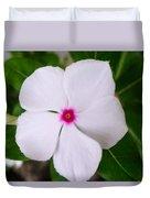 White Periwinkle Flower 1 Duvet Cover