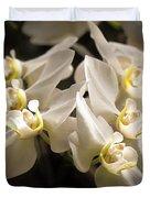 White Phalaenopsis Blossom Duvet Cover