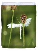 White Plume Moth, Duvet Cover