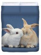 White Rabbit And Sandy Rabbit Duvet Cover
